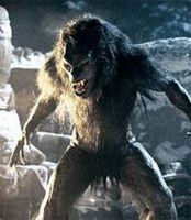 O Werewolfikous